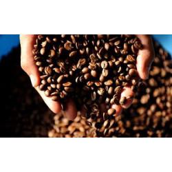 Най-скъпото кафе в света