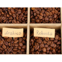 Вкусовите свойства на арабика и робуста